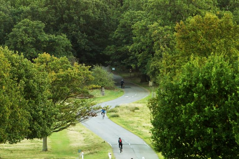 Richmond Park : Ham Common