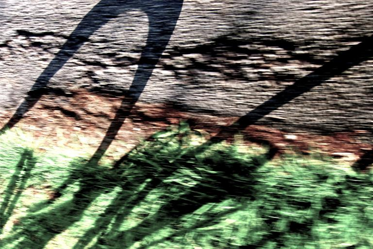 DarkShadow