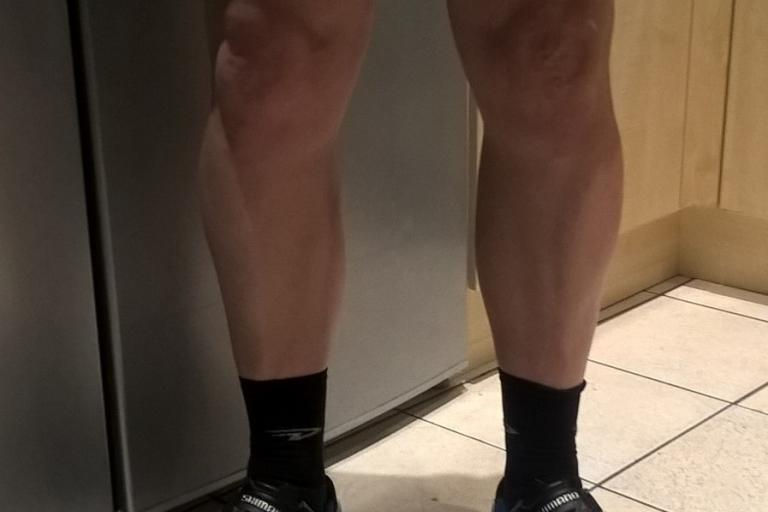 The legs are back.jpg