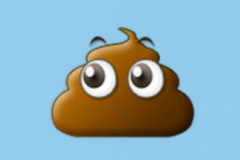 Poo emoji.PNG