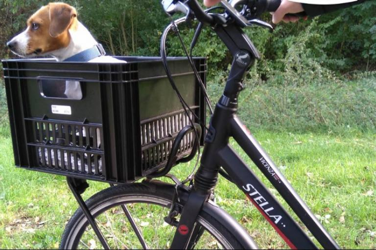 stella e-bike.PNG