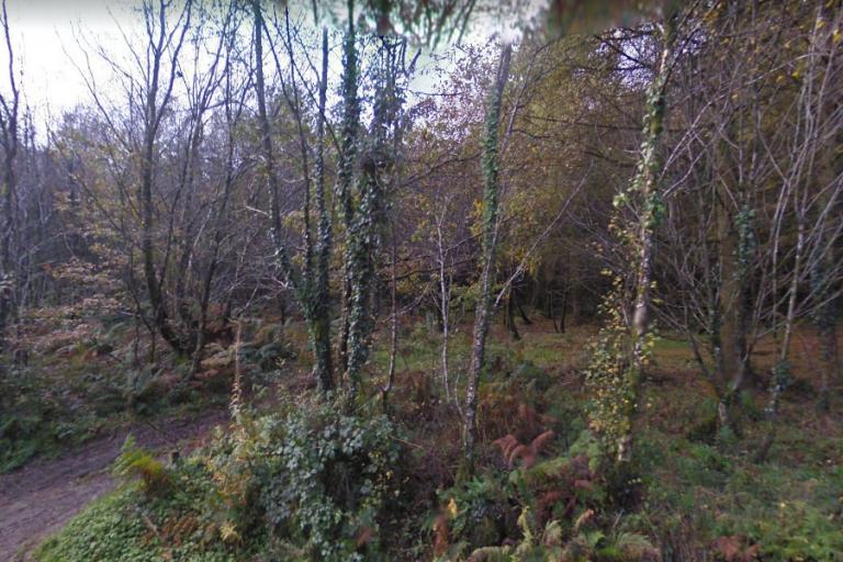 upper_forest_lampeter_via_streetview.jpg